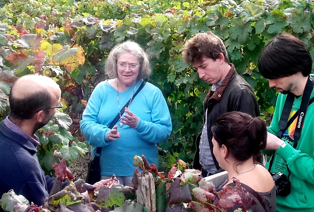Angela Muir, Master of Wine visita D.O. Ribeiro. - VINOS DIFERENTES