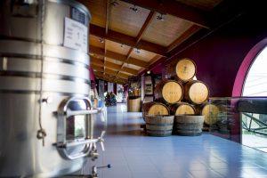 museo-del-vino-emina-ribera
