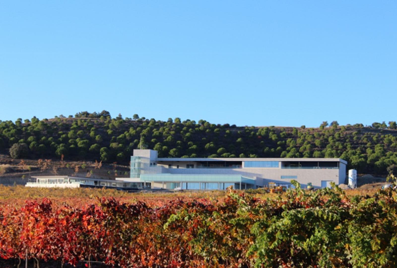 AALTO, un Ribera del Duero en el top 10 mundial