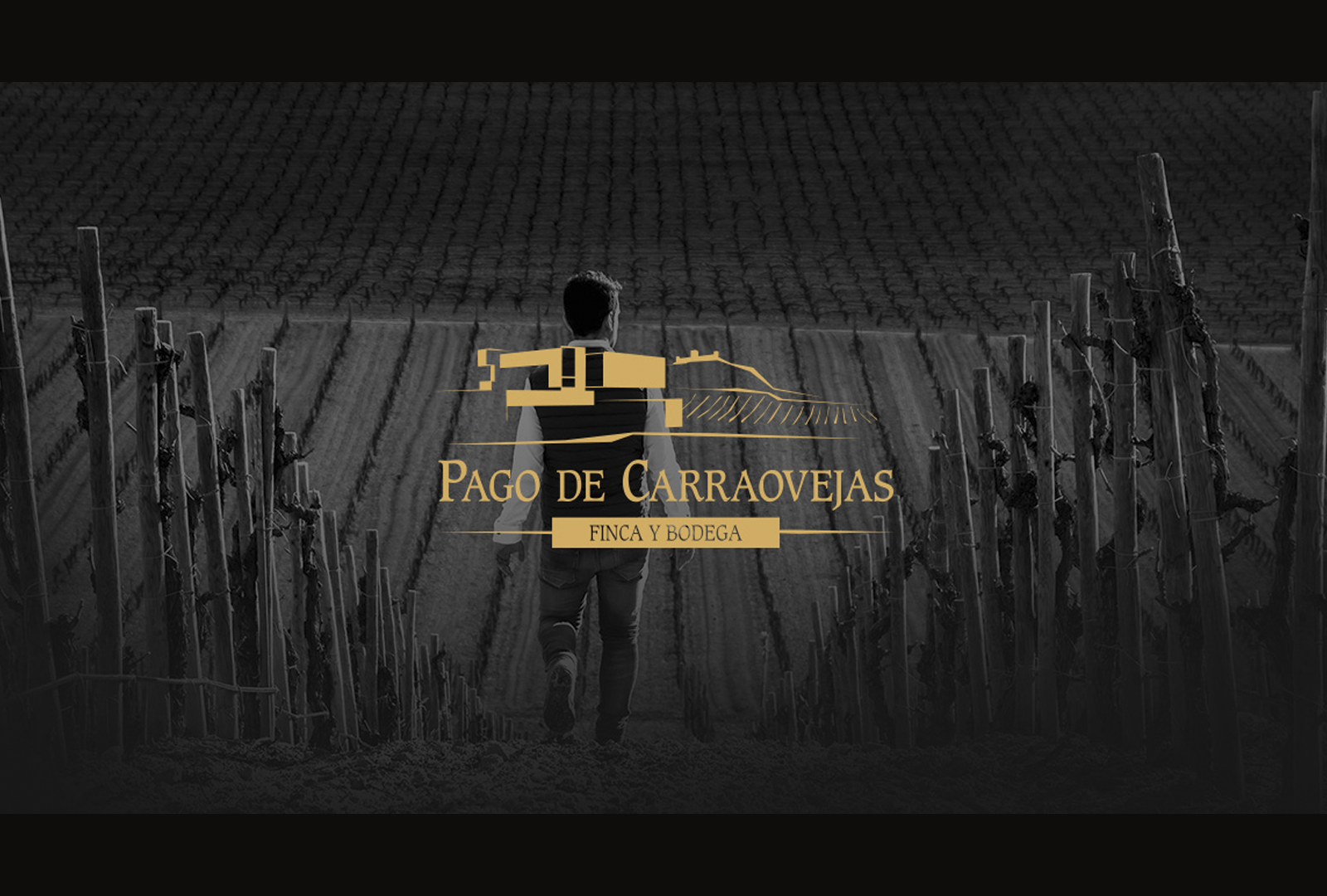 Pago de Carraovejas Winery