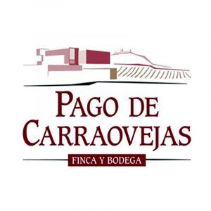 Bodega Pago de Carraovejas. Ribera del Duero.