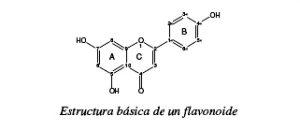 Composición química flavonoides.