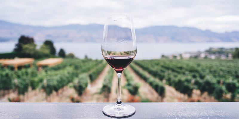 Denominación de Origen del Vino